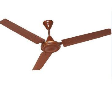 http://www.pepperfry.com/zen-brown-trendy-ceiling-fan-1301843.html