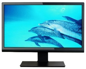 Micromax MM195H76 19.5 LED Monitor